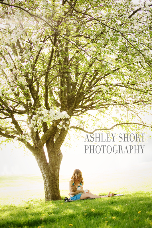 This tree has been the subject of everything from Engagement sessions to newborns!  You