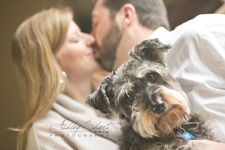 dog in engagement photo, fort wayne indiana