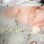 milk bath, floral bath, milk bath with flowers, milk bath instructions, maternity bath photos, toledo maternity photographer, NW Ohio maternity photographer, milk bath tips, pregnancy photos in bath, herbal bath, milk bath photos in ohio, beautiful milk bath, pregnancy photos, unique maternity photos, best maternity photographer